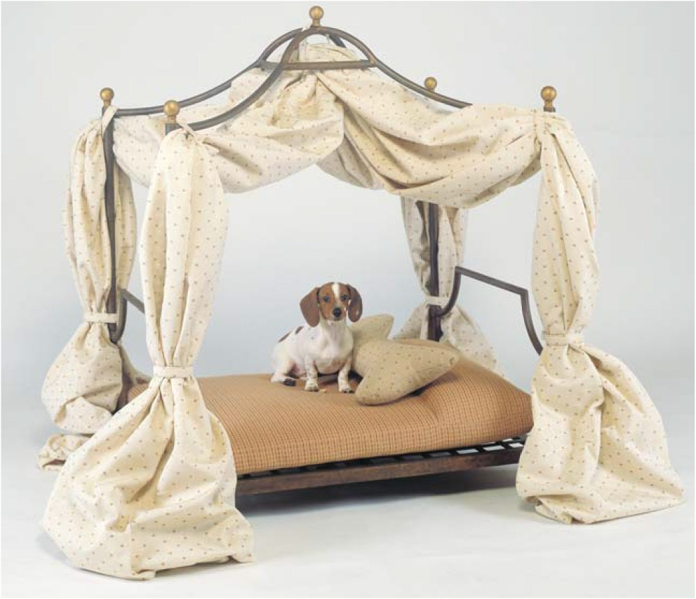 Aurora Canopy Pet Bed & Canopy Pet Bed