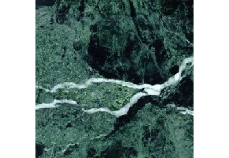 Verde Alpi Maple